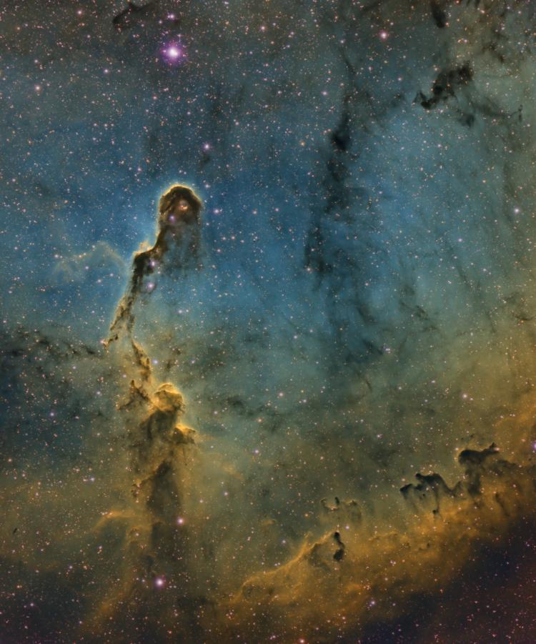 La Nébuleuse de la Trompe IC1396